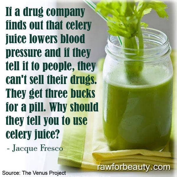 Celery Juice Benefits Lowers Blood Pressure